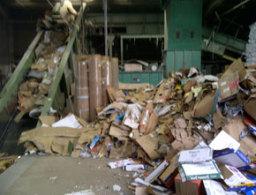 Papre & Cardboard processing depot