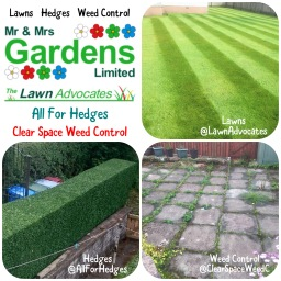 Lawns - Hedges - Weed Control