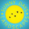 sunny days landscapes
