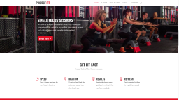 Our webdesign for London's Project Fit gym