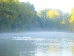 A misty morning on the River Wye