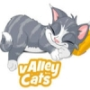 Valley Cats 5 Star Boarding Cattery in Rochdale, Lancashire