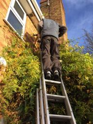 Domestic Electrician York
