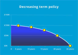 decreasing insurance policy infographic