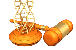Legal DNA Tests for court