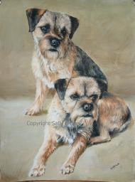 Border terriers gouache watercolour