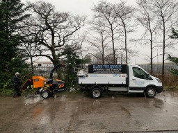 Tree Surgeon Edinburgh