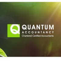 Quantum Accountancy