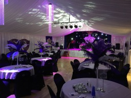Slinkies Events Limited Venue Draping Full