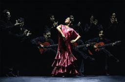 Bailarina Urgulosa def Flamenco