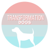 Transformation Dogs