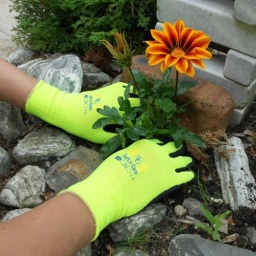 Soft n Care Flora Yellow Gloves - £5.50