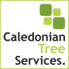Caledonian Tree Services