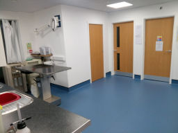 Prep Room with Dental Area