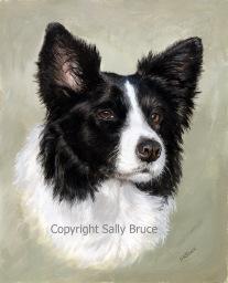 dog portrait gouache watercolour