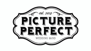 Picture Perfect Wedding Band