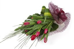 Trendy Tulip Wrap - Home of Flowers - Westcliff