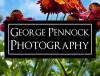 George Pennock Photography