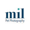 Millers Image Limited (MIL Pet Photography)