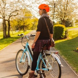 Blue Emu electric bike in the park