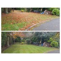 P Raitt Garden Maintenance