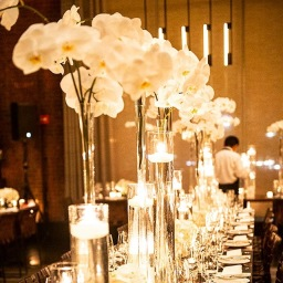 White Orchids & Candlelight