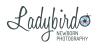 Ladybird Newborn Photography