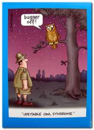 Bugger Off!  'Irritable Owl Syndrome'