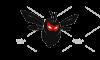 South Yorkshire Pest Control