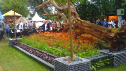 RHS Hampton Court Gold: 'Oak Tree Lying in State'