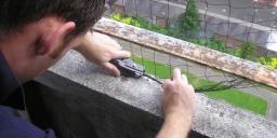 Pest Bird Netting Glasgow Pest Solutions 3