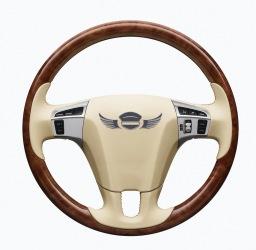 Luxury in Motion Steering Wheel Logo