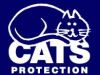 Cats Protection League (High Wycomb)