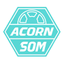 Acorn school of motoring