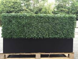 artificial hedge in black trough