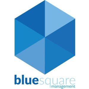 Blue Square Management