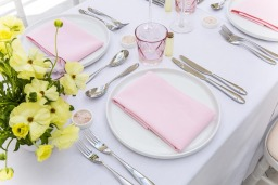 Blossom Pink napkins and Arctic White table cloths