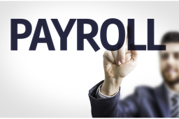 Small Business Accountant Payroll Services