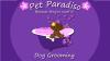 Pet Paradiso Dog Grooming