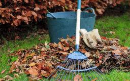 Garden Maintenance by Urban DIY