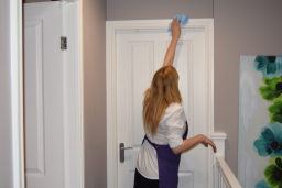 Maid King Domestic Cleaner