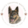 Molly's Grooming Boutique