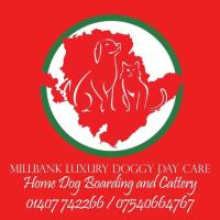 Millbank Luxury Doggy Day Care & Cattery