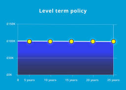 level term insurance cover infographic