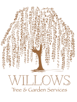 Willows Tree Services