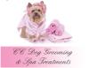 CC Dog Grooming & Spa Treatments