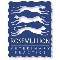 Rosemullion Veterinary Practice - Falmouth
