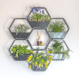 6 Wall Planters by urban B