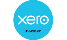 Xero Accountant