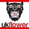 FLORAL SUPPLIES UK